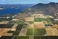 aerial photograph of the vineyards in the Big Valley District AVA in Kelseyville, with Clear Lake, and Mt. Konocti in the background,  Lake County, California