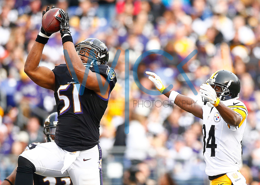 Daryl Smith #51 of the Baltimore Ravens intercepts a pass in front of Antonio Brown #84 of the Pittsburgh Steelers in the second quarter during the game at M&T Bank Stadium on December 27, 2015 in Baltimore, Maryland. (Photo by Jared Wickerham/DKPittsburghSports)