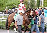 Kindergarden Kid, ridden by Javier Castellano, runs in the Joe Hirsch Turf Classic Invitational Stakes (GI) at Belmont Park in Elmont, New York on September 29, 2012.  (Bob Mayberger/Eclipse Sportswire)