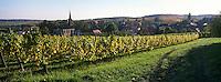 Europe/France/Alsace/67/Bas-Rhin/Cleebourg : Village et vignoble