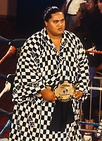 Yokozuna 1994<br /> Photo By John Barrett/PHOTOlink