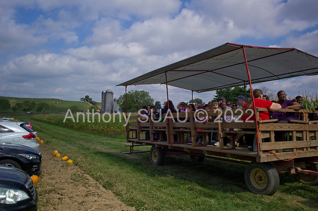 Kutztown, Pennsylvania<br /> September 20, 2014<br /> <br /> The annual apple festival at the Rodale Institute which offers all you can pick organic apples. <br /> <br /> 5,000 people attended the festival this year as Maria Rodale herself serves the organic hot dogs.
