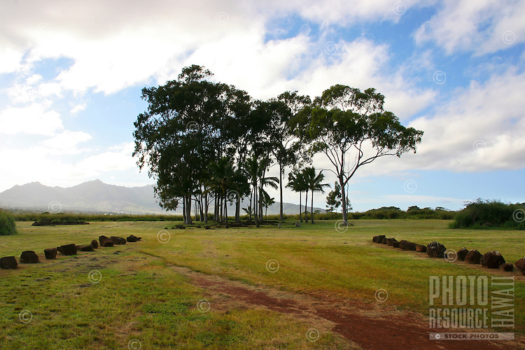 """Kukaniloko, a sacred place also known as """"The birthing stones,"""" is located in Wahiawa, O'ahu."""