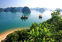 Vietnam, Northeast, Halong Bay, North Vietnam, Coast, Junk ships in front of Dao Ti Top Island in Ha Long Bay, North Vietnam, Quang Ninh