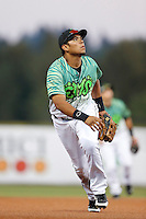Fernando Perez #38 of the Eugene Emeralds during a game against the Boise Hawks at PK Park on July 25, 2013 in Eugene, Oregon. Eugene defeated Boise, 5-4. (Larry Goren/Four Seam Images)