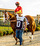 SEPT 25, 2021: Amereicanrevolution post parade in the Gr.1 Pennsylvania Derby, for 3-year olds, going 1 1/8 mile, at Parx Racing, Bensalem, PA. Sue Kawczynski/Eclipse Sportswire/CSM