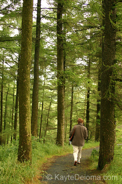 A woman walking alone in Glenariff Forest Park, County Antrim, Northern Ireland