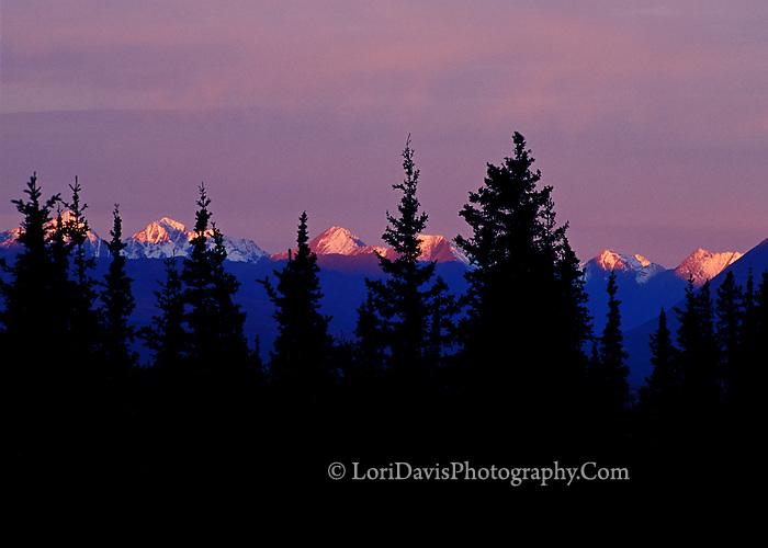 #L20  Purple Sunset, Denali Range