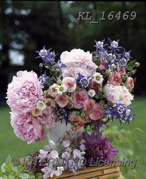 Interlitho-Alberto, FLOWERS, BLUMEN, FLORES, photos+++++,flowers,pink,KL16469,#f#, EVERYDAY