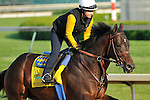 Midnight Interlude on the Churchill Downs track on April 30, 2011.