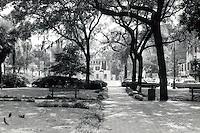 Savannah:  A Square.