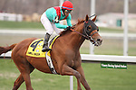 Animal Kingdom with Alan Garcia up wins The Vinery Racing Spiral Stakes (grIII) at Turfway Park. Florence, KY. 2011.03.26