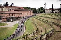 rolling around the vineyards on the Slovenian border<br /> <br /> 104th Giro d'Italia 2021 (2.UWT)<br /> Stage 15 from Grado to Gorizia (147km)<br /> <br /> ©kramon