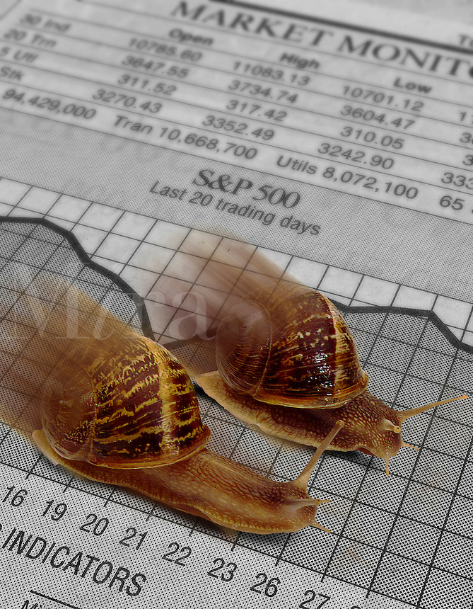 snails racing on a newspaper showing the stock market.