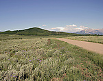 Mountain meadow on the Grand Mesa in western Colorado.