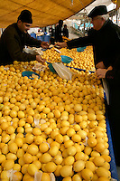 Lemons in an Istanbul market, Turkey