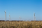This photo is of  a wind farm under construction in Freeborn County Minnesota. Wind turbines in rural areas are part of the new sustainable energy future of the United States. Wind turbines don't emit any pollution that could contaminate lakes and streams.