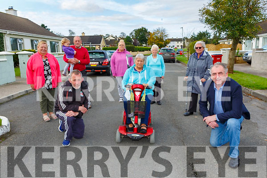 Cllr Michael CAhill with residents of Iveragh PArk Killorglin who are asking the council to put speed reduction signs  and speed bumps on their roads front row l-r: Adrian O'Connor, Lorna Richardson, Cllr Michael Cahill. Back row: Marian Ahern, Ella O'Sullivan, PAt Anern, MellisaClifford, MAureen GAmble and Lucinda Ryan