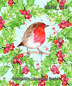Kate, CHRISTMAS SYMBOLS, WEIHNACHTEN SYMBOLE, NAVIDAD SÍMBOLOS, paintings+++++,GBKM658,#xx# , red robin , wreath