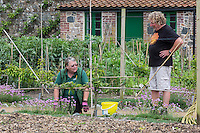Royaume-Uni, îles Anglo-Normandes, île de Guernesey, Castel : Saumarez Park - Jardinieres dans le Walled Garden de cuisine // United Kingdom, Channel Islands, Guernsey island, Castel : Saumarez Park gardeners, Walled Garden de cuisine