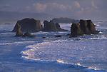 Sea stacks at Bandon Beach .view from Face Rock State Wayside; .Bandon, Oregon coast.  .#2305-4117