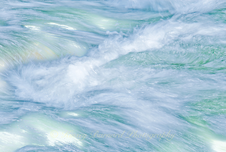 """""""FLATHEAD FLYING""""<br /> <br /> The rushing waters of the Flathead River 24 x 36 signed, original, gallery wrapped wrapped canvas $2,500. Check for availability"""