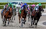 HALLANDALE, FLORIDA - MARCH 30: Champagne Anyone #5 (blue cap), ridden by Chris Landeros, wins the Gulfstream PARK Oaks on Florida Derby Day at Gulfstream Park Race Track in Hallandale Beach, Florida. Scott Serio/Eclipse Sportswire/CSM