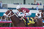 HALLANDALE BEACH, FL - JANUARY 21: #4 Our Way (white cap) with jockey John Velazquez up wins the Sunshine Millions Turf Stakes at Gulfstream Park. (Photo by Arron Haggart/Eclipse Sportswire/Getty Images