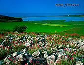 Tom Mackie, LANDSCAPES, LANDSCHAFTEN, PAISAJES, FOTO, photos,+4x5, 5x4, bay, bloom, calm, color, colorful, colour, colourful, Eire, EU, Europa, Europe, European, flower, flowers, horizont+al, horizontally, horizontals, Ireland, Irish, large format, rock, rocky, view,4x5, 5x4, bay, bloom, calm, color, colorful, c+olour, colourful, Eire, EU, Europa, Europe, European, flower, flowers, horizontal, horizontally, horizontals, Ireland, Irish,+large format, rock, rocky, view+,GBTM030109-4,#L#, EVERYDAY ,Ireland