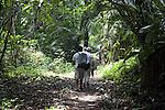 People hiking on the Blue Creek Cave Trail near Punta Gorda, Belize