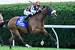 October 9, 2021: In Love (BRZ) #3, ridden by jockey Alex Achard wins the Keeneland Turf Mile on the turf (Grade 1) on opening weekend at Keeneland Racecourse in Lexington, K.Y. on October 9th, 2021. Jessica Morgan/Eclipse Sportswire/CSM