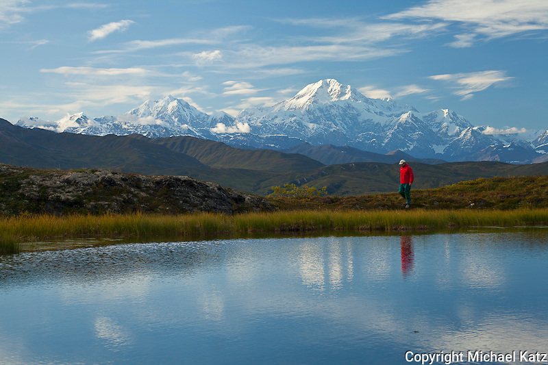 Denali Pond and Reflections