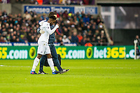 Nathan Dyer of Swansea City leaves the field with Richard Buchanan Performance Director during the Premier League match between Swansea City and Leicester City at The Liberty Stadium, Swansea, Wales, UK. Sunday 12 February 2017