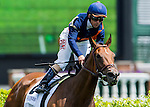 May 3, 2014: Rider Javier Castellano and Coffee Clique ride through the finish line to win the Churchill Distaff Turf Mile Stakes on Kentucky Derby Day at Churchill Downs in Louisville, KY. Logan Riely/ESW/CSM