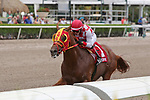 HALLANDALE BEACH, FL - JUNE 30:   #1 War Giant (KY) with jockey Emisael Jaramillo on board wins the Carry Back Stakes on Summit Of Speed Day at Gulfstream Park on June 30, 2018 in Hallandale Beach, Florida. (Photo by Liz Lamont/Eclipse Sportswire/Getty Images)