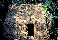 "Hale, a traditional Hawaiian """"thatched hut"