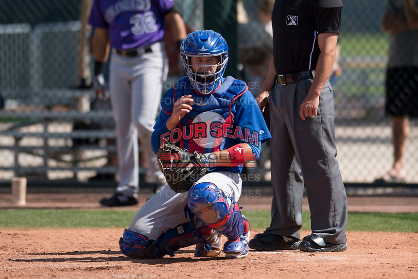 Chicago Cubs catcher PJ Higgins (13) during a Minor League Spring Training game against the Colorado Rockies at Sloan Park on March 27, 2018 in Mesa, Arizona. (Zachary Lucy/Four Seam Images)