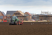6-3-2021 Drilling Spring Barley in front of a new housing development in Lincolnshire <br /> ©Tim Scrivener Photographer 07850 303986<br />      ....Covering Agriculture In The UK....