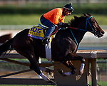 October 27, 2019 : Breeders' Cup Classic entrant Mongolian Groom, trained by Enebish Ganbat, exercises in preparation for the Breeders' Cup World Championships at Santa Anita Park in Arcadia, California on October 27, 2019. Carolyn Simancik/Eclipse Sportswire/Breeders' Cup/CSM