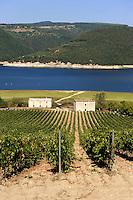 Italien, Umbrien, Lago di Corbara, Stausee des Tiber