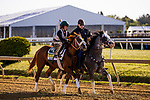 MAY13, 2021: Ram with Trainer D Wayne Lukas on track as he prepares for the. Preakness Stakes at Pimlico Race Course in Baltimore, Maryland on May 13, 2021. EversEclipse Sportswire/CSM