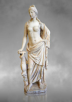 2nd - 1st century BC Roman marble sculpture of Aphrodite (Venus), 'Marine Venus' Type with a dolphin, copied from a Hellanistic Greek original,  inv 6296, Museum of Archaeology, Italy, grey art background