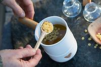 Harzsalbe selbermachen, Harz-Salbe selbermachen, selber machen, selber rühren: Zutaten: Fichtenharz, Olivenöl, Bienenwachs. Balsam, Harzsalbe, Harzcreme, Harzbalsam, Pechsalbe, Fichtenharz wird zusammen mit Olivenöl und Bienenwachs zu einer Heilsalbe, Heilcreme, Creme, Salbe verarbeitet. Schritt 4: in das Olivenöl-Harz-Gemisch wird Bienenwachs hinzugegeben und das Ganze wird im Topf auf einem Stövchen erwärmt, das Wachs löst sich auf. Fichten-Harz, Baumharz, Harz, liquid pitch, tree gum, galipot, gallipot. Gewöhnliche Fichte, Fichte, Rot-Fichte, Rotfichte, Picea abies, Spruce, Common Spruce, Norway spruce, L'Épicéa, Épicéa commun