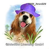 Howard, REALISTIC ANIMALS, REALISTISCHE TIERE, ANIMALES REALISTICOS, paintings+++++,GBHRPROV224,#a#, EVERYDAY ,selfies