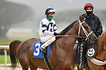 February 27, 2021: #3, Last Samurai in the post parade of the Southwest Stakes (Grade 3) at Oaklawn Park in Hot Springs, Arkansas. Ted McClenning/Eclipse Sportswire/CSM