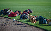 9 March 2014: A collection of Washington Nationals baseball gloves lie on the turf during batting practice prior to a Spring Training game against the St. Louis Cardinals at Space Coast Stadium in Viera, Florida. The Nationals defeated the Cardinals 11-1 in Grapefruit League play. Mandatory Credit: Ed Wolfstein Photo *** RAW (NEF) Image File Available ***