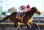 Caleb's Posse, ridden by jockey Rajiv Maragh and trained by Donnie Von Hemel wins the Breeders' Cup Dirt Mile at Churchill Downs on  November 4, 2011..