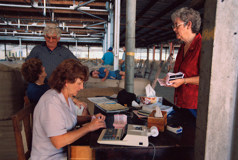 Accounting the Bales, (clockwise from right) Lyn Stradhams, Gwen Whitely, Bev Allen, Remzi Mulla, and Mark Steele at rear, Mareeba Sales Floor, Mareeba, 2002.
