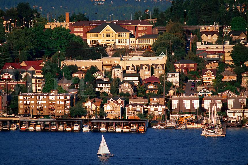 Houses along the lakeshore with passing sailboat, Seattle, Washington