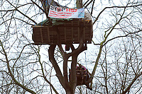 Protesters on a platform in the trees during a protest against the building of the HS2 railway line at Euston Square Gardens on 27th January 2021